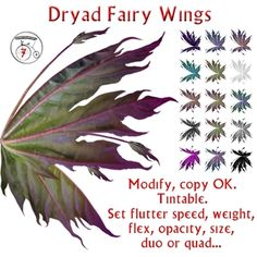fairy wings Fairy Crafts, Fun Crafts, Fairy Sketch, Dragon Makeup, Clay Fairies, Fairy Figurines, Fairy Wings, Fairy Dolls, Fairy Land