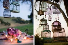 Eclectic birdcage mix