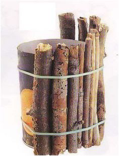 Nature craft TWIG VASE ~ this would be so cute in Will's room!