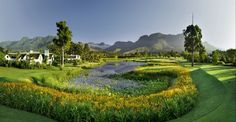Read our guide to playing the Fancourt Outeniqua Golf Course in South Africa. Eagle Golf Tours is ATOL Protected. Public Golf Courses, Best Golf Courses, African Holidays, Coeur D Alene Resort, Golf Holidays, Golf Course Reviews, Leading Hotels, Golf Tour, Fauna