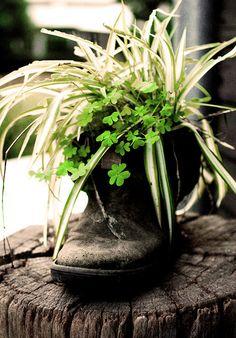 scarpone vaso di fiori