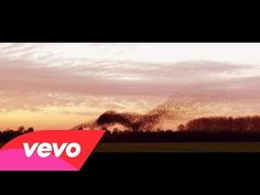 Marco Borsato - Mooi (official video) - YouTube