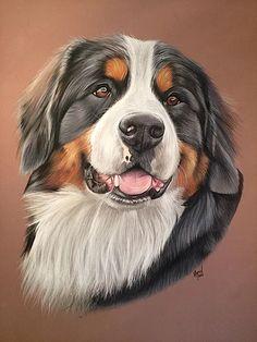 lespastelsdevir   Portraits chiens