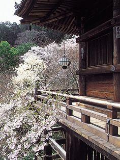 長谷寺(奈良県桜井市)