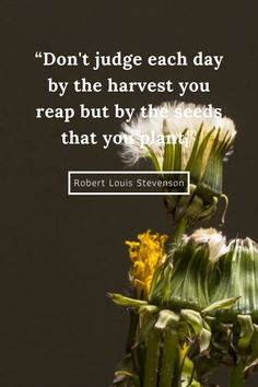 Good Life Quotes, Success Quotes, Quotes To Live By, Seed Quotes, Quotes Quotes, Motivational Quotes, Inspirational Quotes, Planting Seeds Quotes