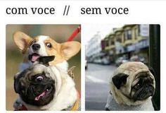 SEMPRE MELHOR COM VOCÊ! ❤❤❤ #cachorro  #petmeupet  #filhode4patas  #amoanimais  #amocachorro