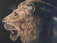 Lion (page 25) Jo W.