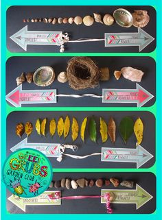 Bring some active learning to your nature table by incorporating the skills of comparing, ranking and ordering! This pack contains a variety of sorting/continuum arrows that the children can use to organise and arrange the natural materials on your classroom nature table... $