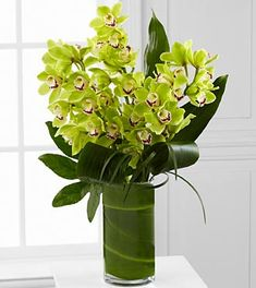 Modern Green Orchid Bouquet at Send Flowers. Mixed green cymbidium orchids bouquet with aspidistra leaves, aralia leaves, ti leaf and lily grass blade. Tropical Floral Arrangements, White Flower Arrangements, Tropical Flowers, Green Flowers, Spring Flowers, Green Orchid, Jade Green, Orchid Bouquet, Anniversary Flowers