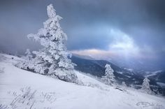 Winter Fresh by Sugar Mtn Photography, via Flickr