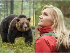 Ocitnúť sa zoči-voči medveďovi je nočná mora každého turistu: Noste pri sebe TÚTO vec, radí slovenský ochranár   Topky.sk Brown Bear, Animals, Animales, Animaux, Animal, Animais