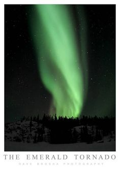 """""""The Emerald Tornado"""" by Dave Brosha, Yellowknife, Northwest Territories // One of my personal favourites, this image was shot on Prelude Lake, along the Ingraham Trail outside of Yellowknife, Northwest Territories.  Photographed on the best aurora show I've ever experienced, February 25, 2006. // Imagekind.com -- Buy stunning, museum-quality fine art prints, framed prints, and canvas prints directly from independent working artists and photographers."""