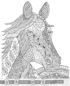 Free Animal Adult Coloring Pages - Horse #freeadultcoloringpages #freeprintableadultcoloringpages