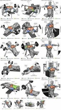 How To Get The Best Chest Workout is part of Chest workouts - Heavy compound exercises are known as one of the main exercises for gaining muscle mass and they should be included in your chest training There are a lot of opinions Fitness Workouts, Weight Training Workouts, Gym Workout Tips, At Home Workouts, Body Training, Strength Training, Fitness Foods, Fitness Tips, Workout Fitness