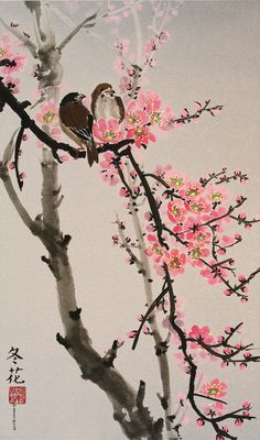 Amazon.com: Love Birds on the Cherry Blossom Tree -- Colored Background, Giclee Print, Flower Picture of Two Birds Perching on a Branch, 12 X 20 Inches: Watercolor Paintings: Watercolor Paintings