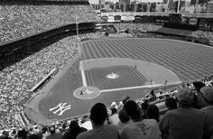 Yankee Stadium Black And White Wall Mural Sizes U0026 Pricing Here Http