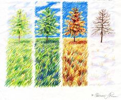 painting of the four seasons, trees and field 4 Seasons Weather, Four Seasons, Solstice And Equinox, Sketch Manga, Organic Mulch, Finding Happiness, One Tree, High Art, Art Pictures
