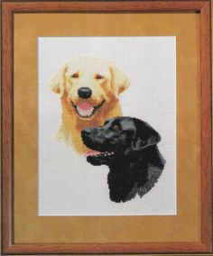 Dog-Labrador Retrievers