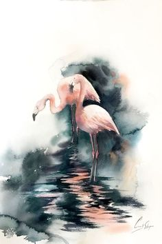 dark art Buy Two flamingos in emerald dark water Original watercolor painting, Watercolor by Sophie Rodionov on Artfinder. Discover thousands of other original paintings, prints, sculptures and photography from independent artists. Watercolor Bird, Watercolor Animals, Watercolour Painting, Flamingo Painting, Flamingo Art, Water Photography, Animal Photography, Photography Flowers, Couple Painting