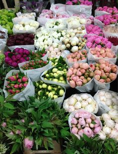 peonies at NYC flower market