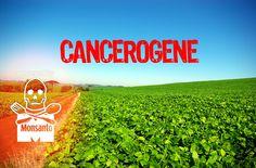 Le Glyphosate empoisonne l'environnement et nos aliments. Pesticide le plus vendu dans le monde et classé 'cancérogène probable' par l'OMS, le désherbant de Monsanto pourrait pourtant être autorisé pour 15 années supplémentaires par l'Union européenne ! Merci de signer notre pétition pour empêcher cette prolongation.