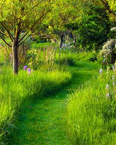 This path reminds me of the secret meadow I found when I was 6. It's easy to do and beautiful to walk. Plant fast-growing grass, and then mow your path.