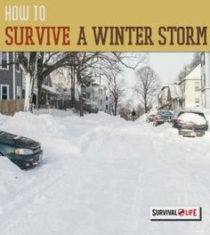 How to Survive a Winter Storm   Off grid survival tips at survivallife.com #wildernesssurvival #outdoorsurvival #survivaltips
