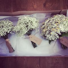 Gypsophila and daisies wedding bride and bridesmaids bouquets.  www.blossomandbramble.co.uk  Blossom and Bramble