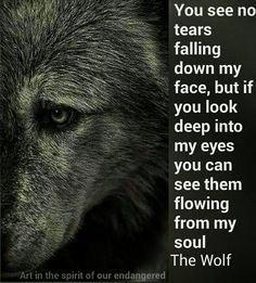 Badass Quotes, True Quotes, Great Quotes, Motivational Quotes, Inspirational Quotes, Qoutes, Faith Quotes, Lone Wolf Quotes, Wolf Love