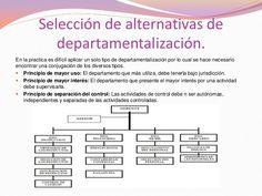 * seleccion de alternativas de departamentalizacion.