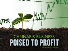 Cannabis Business Poised for Profit