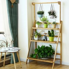 Costway 3 Tier Bamboo Hanging Folding Plant Shelf Stand Flower Pot Display Rack Bookcase Image 7 of 10 Bamboo Plants, Cool Plants, Green Plants, Shade Plants, Live Plants, Nature Plants, Diy Hanging Shelves, Plant Shelves, Shelf Display