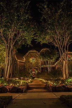 Green white christmas lights dallas the perfect light chrismtas lights enhance landscape the perfect light aloadofball Images