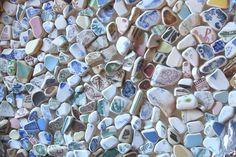 sea pottery pieces