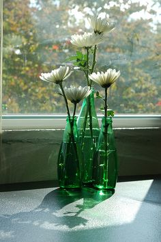 Perrier bottle Center pieces with poppies and with rubby slippers