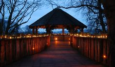 Alnwick Garden | The treehouse resturant is meant to be good and I want to visit the poison garden.