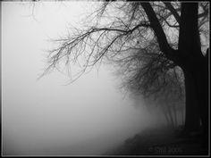Gloomy_day_by_Smil.jpg (1000×750)