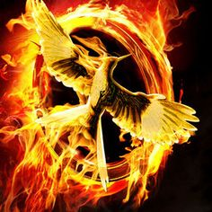 The Hunger Games: Mockingjay Part 1 and 2 Land Director Francis Lawrence - The Hunger Games: Catching Fire filmmaker will return for this two-part Panem finale starring Jennifer Lawrence, coming to theaters in 2014 and 2015.