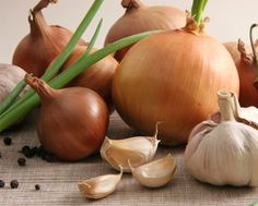 It's time to plant garlic, onions & shallots Garlic Sprouts, Causes Of Bad Breath, Planting Onions, Outdoor Crafts, Different Plants, Edible Garden, Dream Garden, Farm Life, Indoor Plants