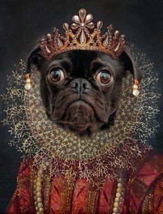 Toi té le plus bo ! Equine Photography, Animal Photography, Portrait Renaissance, Dog Canvas Painting, Old Pug, Pug Art, Photo Portrait, Funny Dog Pictures, Dog Portraits