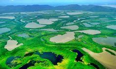 Parque Nacional do Pantanal Matogrossense (MT e MS)