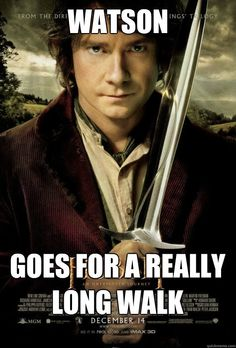 Omg it's what Watson does while he thinks sherlock is dead!     : D