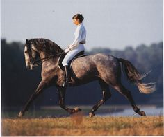 Rider's form