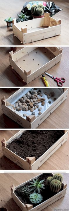 Top Creative DIY Cactus Planters Ideas You Should Copy Right Now no 22