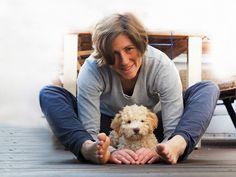 Lagotto Romagnolo Hundefotos Hunde Fotos Und Hundeverhalten