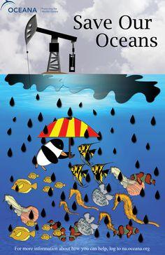 Cuidemos los mares y océanos