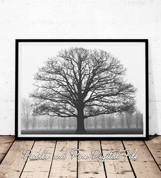 Grand Oak Tree Print Black and White Photography Black and