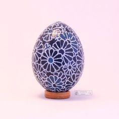 Chrysanthemum washi egg