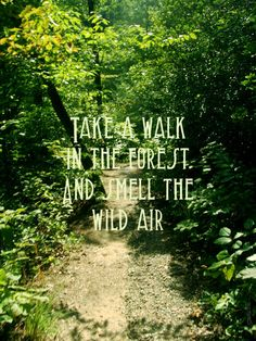 Take a walk in the forest and smell with wild air. #nature #quote #selfcare