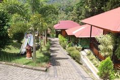 Mountainview Resort Tomohon . Module Program . Celebes Divers